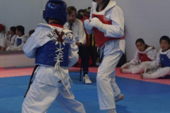 Championship-sparring