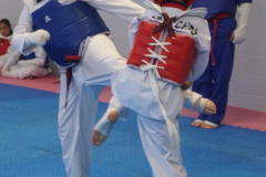 Taekwondo-championship