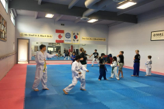 tae_kwon_do-patterns1