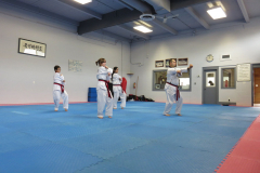 teens-and-adults-taekwondo